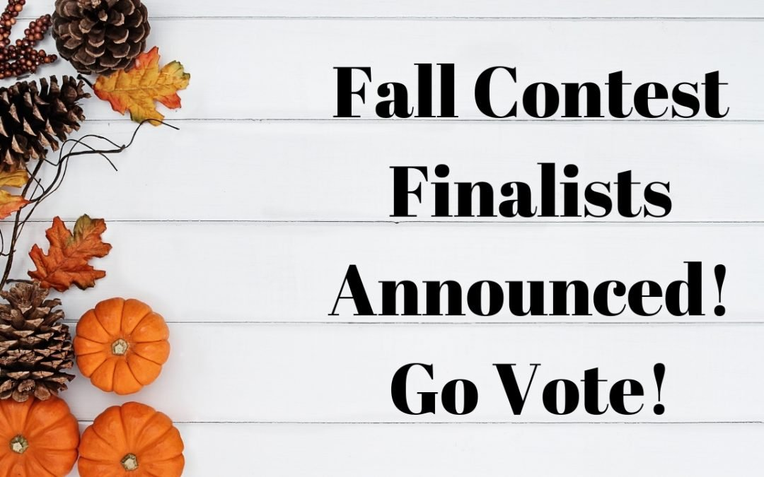 DIY Project Fall Contest Finalists