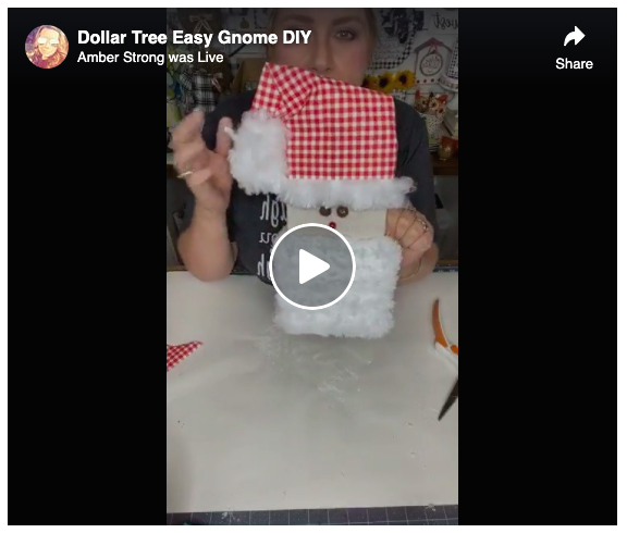 Screen grab Dollar Tree Easy Gnomes DIY