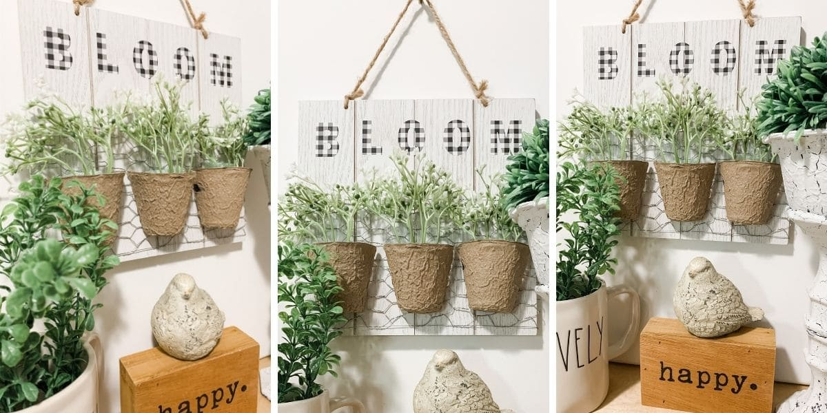 Easy DIY Spring Decor with Seed Starters