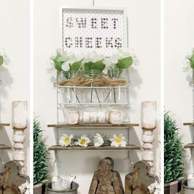 Dollar Tree Shower Organizer DIY Shelves